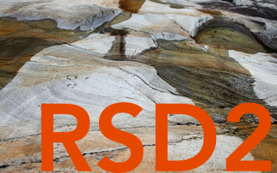 RSD2 – Foundations: The Systemic Design Movement